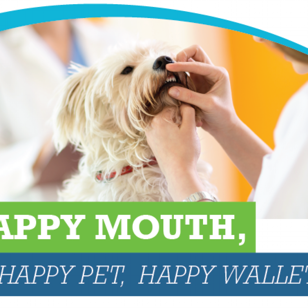 Healthy Mouth, Healthy Pet