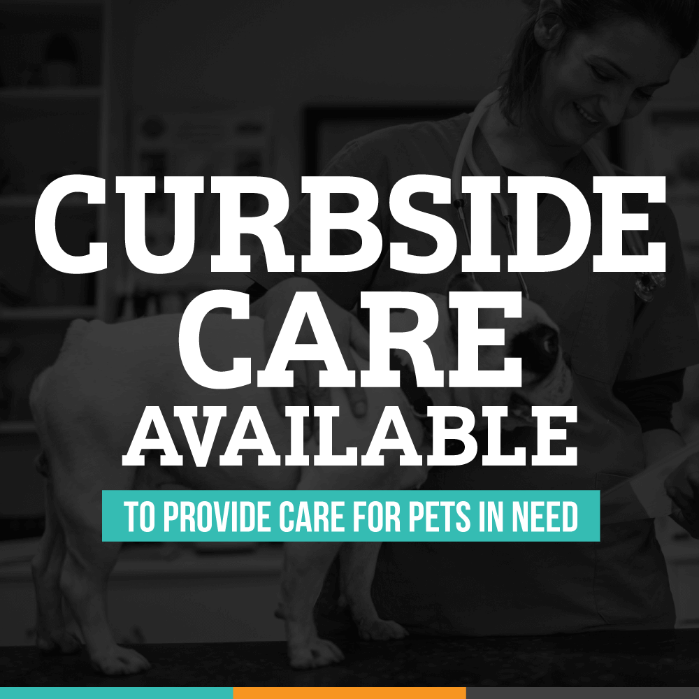 Curbside Pet Pick-Up is Required